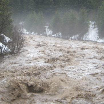 遇到溪水暴漲!如何自救?